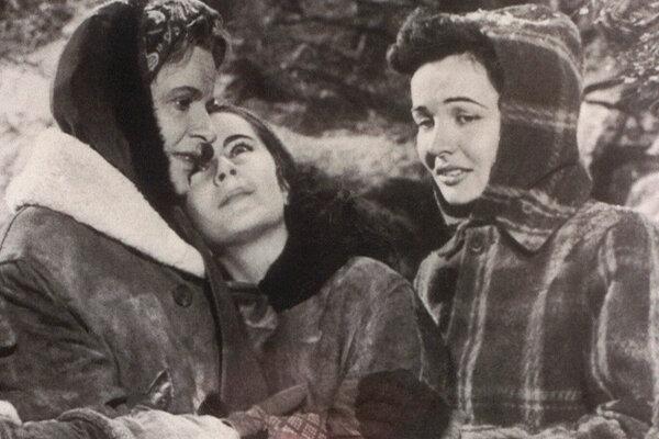 кадры и фото из фильма Храбрость Лесси