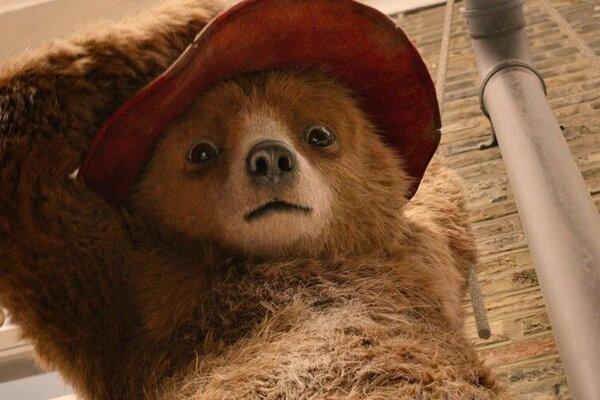 кадры и фото из фильма Приключения Паддингтона 2
