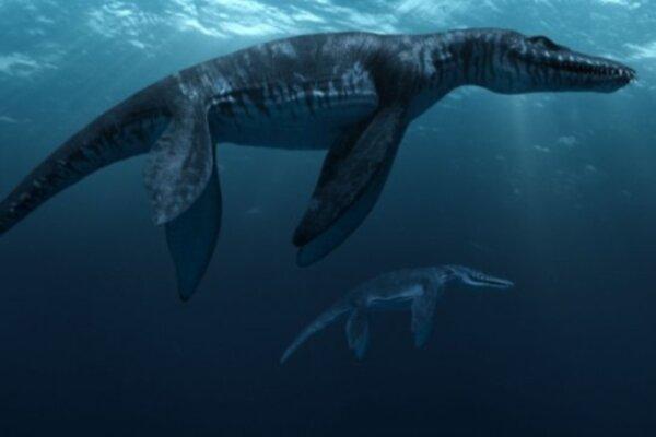 кадры и фото из фильма Морские динозавры IMAX 3D: Путешествие в Доисторический Мир