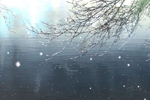 кадры и фото из фильма Сад изящных слов