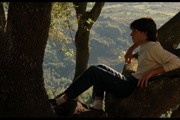кадры и фото из фильма Тем летом