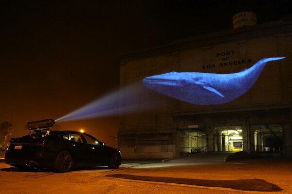 кадры и фото из фильма Гонка на вымирание