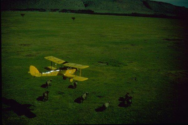 кадры и фото из фильма Из Африки
