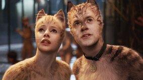 «Кошки», «Рэмбо 5» и другие: объявлен полный список лауреатов «Золотой малины»
