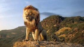«Король лев» стал самым кассовым фильмом 2019 года в России