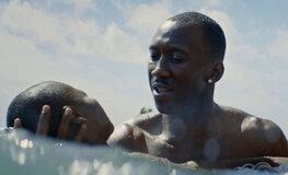 """""""Ла-Ла Лэнд"""" не получил """"Оскар"""" в катеогрии """"фильм года"""". Лучшим фильмом признан """"Лунный свет"""""""