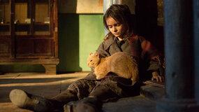 Фильм «Война Анны» стал победителем кинопремии «Ника»