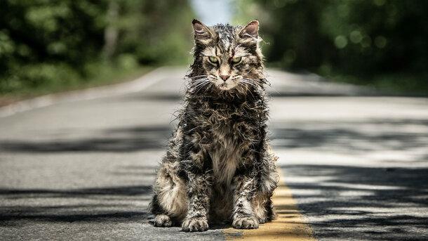 Трейлер «Кладбища домашних животных»: Зловещий кот и страшные маски