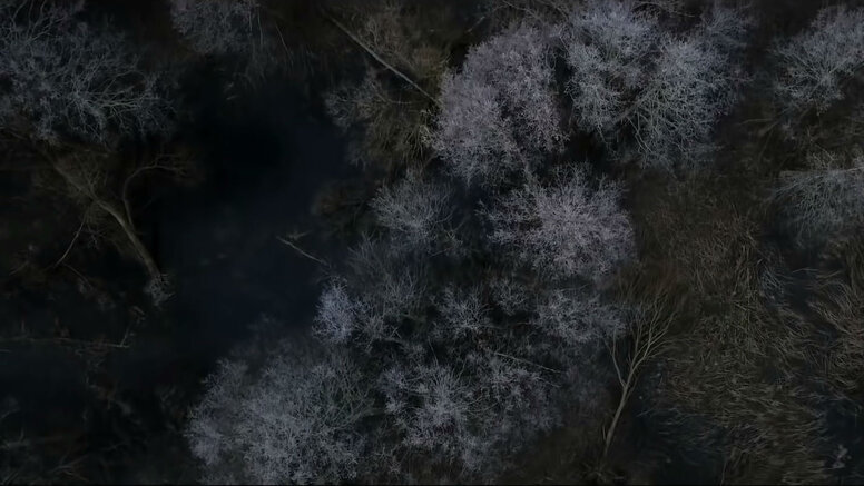 Чтобы выжить— беги: Тизер-трейлер хоррора «Вдова»