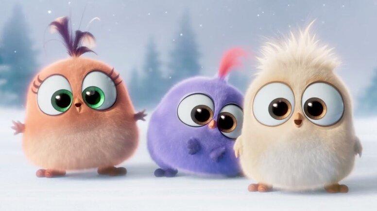 Netflix показал первый кадр из мультсериала по Angry Birds