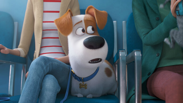 Гарик Харламов иСергей Гармаш озвучили героев мультфильма «Тайная жизнь домашних животных2»