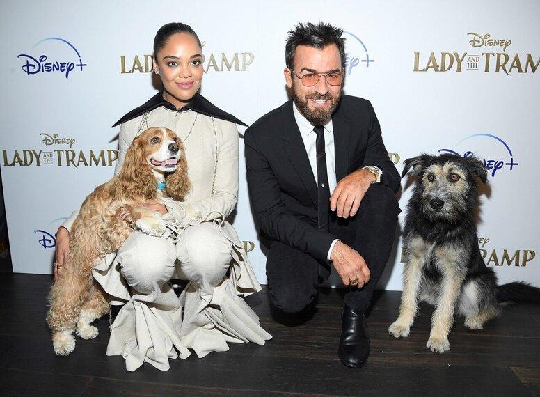 Тесса Томпсон и собачки: в Нью-Йорке прошла премьера ремейка «Леди и Бродяга» для Disney+