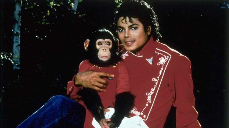Тайка Вайтити отказался от фильма про шимпанзе Майкла Джексона