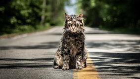 «Кладбище домашних животных»: Мнение критиков