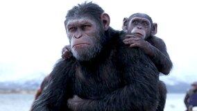 Следующая «Планета обезьян» может стать перезапуском франшизы
