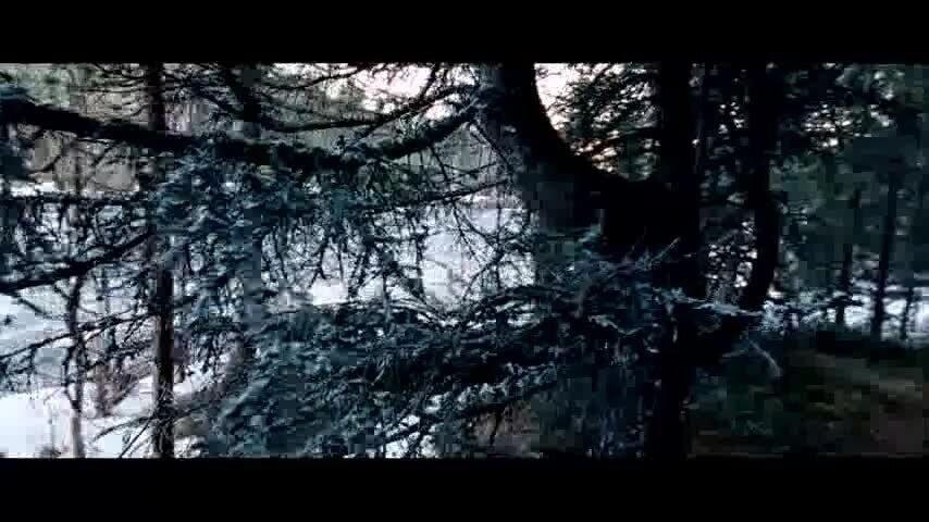 Самка - музыкальный отрывок